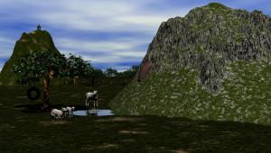 sheep_b