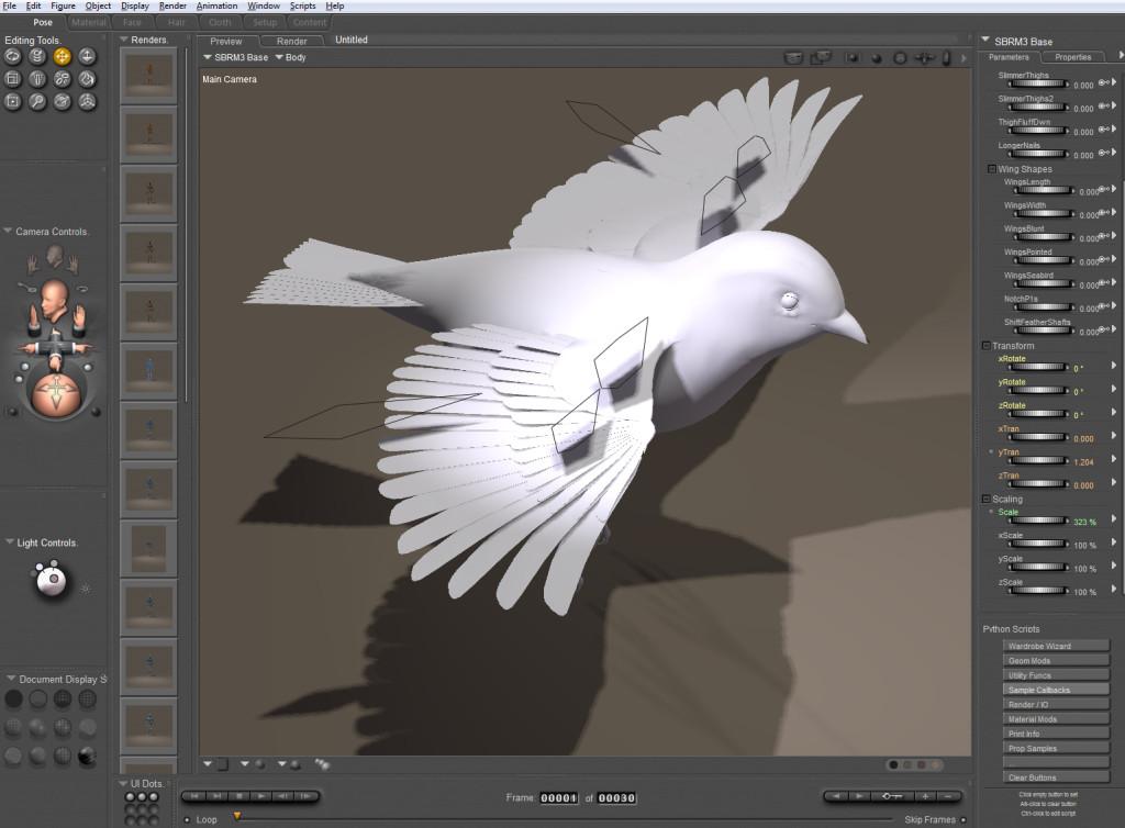 Bird_obj