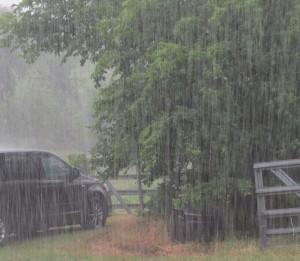 Nature_rain
